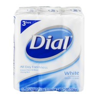 Dial All Day Freshness Antibacterial Bar Soap White - 3 ct