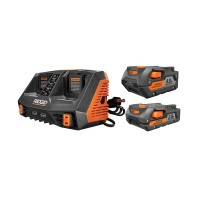 RIDGID 18-Volt Lithium-Ion Dual Port Sequential Charger Kit with (1) 4.0 Ah Battery and (1) 2.0 Ah Battery