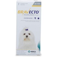 Bravecto Chewable Tablet for Dogs - Yellow, For Dogs 4.4 to 9.9 lbs.