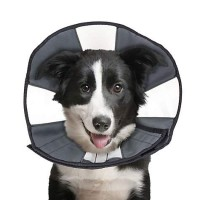 ZenPet ZenCone Soft Recovery Collar Large