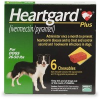 Heartgard Plus Chewables for Dogs 26 to 50 lbs., 6 Pack