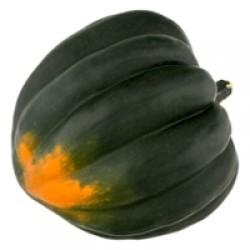 Squash Acorn