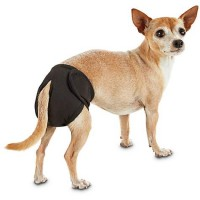 So Phresh Washable Diaper for Dogs, X-Small