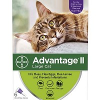Advantage II Once-A-Month Topical Large Cat Flea Treatment, 6 mo., Over 9 lbs.