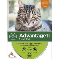 Advantage II Once-A-Month Topical Small Cat Flea Treatment, 6 mo., 5 to 9 lbs.
