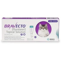 Bravecto Topical Solution for Cats - Purple, For Cats 13.8 to 27.5 lbs.