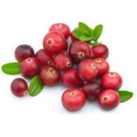 Premium Cranberries Fresh