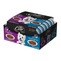 CESAR GOURMET FILETS Variety Pack Filet Mignon & New York Strip Flavor Dog Food, 3.5 oz., Case of 12