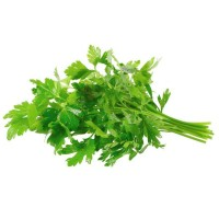 Parsley Italian