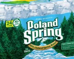 Poland Spring Water - 24 pk