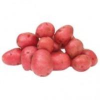Organic Baby Potatoes Medley