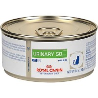 Royal Canin Veterinary Dietfeline Urinary SO In Gel Wet Cat Food, 5.8 oz., Case of 24